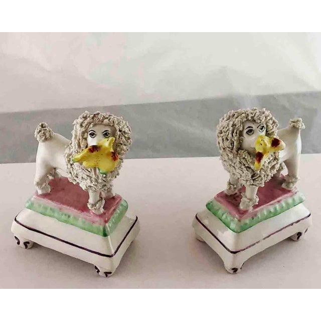A beautiful pair of glazed Staffordshire Poodles each has a Yellow Bird in its mouth. The poodles are white with rough...