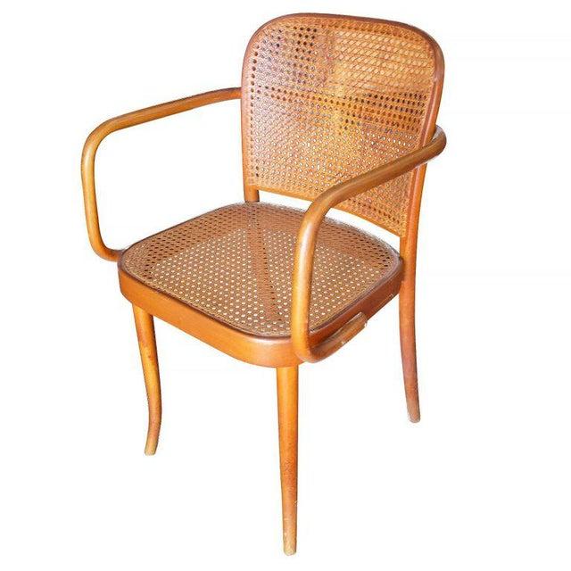 Top World-Class Josef Hoffmann No 811 Bentwood Cane Chair by Thonet  XI96