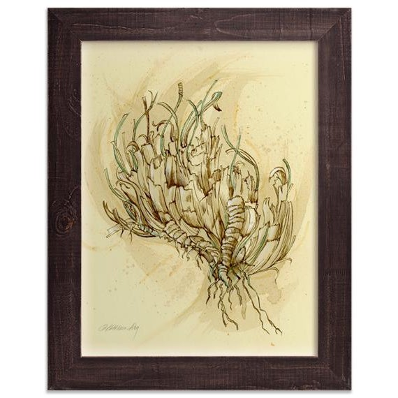 Metal Natural History Botanical Pen and Ink Drawing, Plant Life 2 by Kathleen Ney For Sale - Image 7 of 7