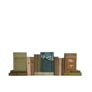 Vintage Cabin Reading : Set of Fifteen Decorative Books