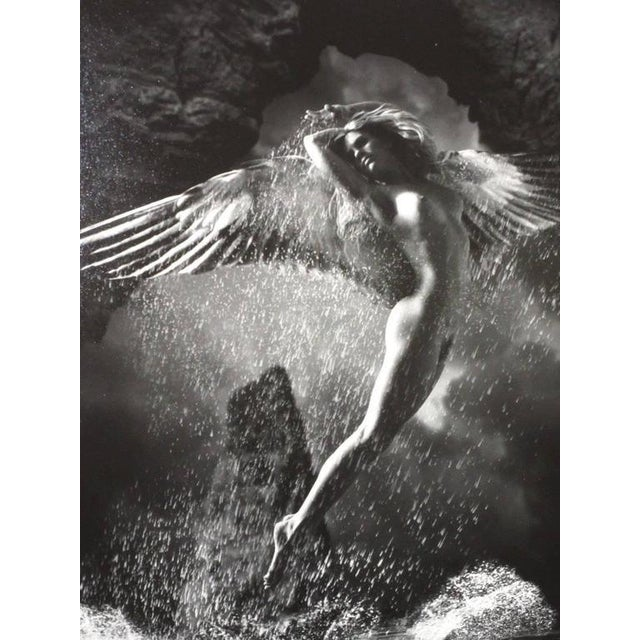 Photography 2001 James Porto 'The Guardian' Framed Silver Gelatin Photograph For Sale - Image 7 of 8