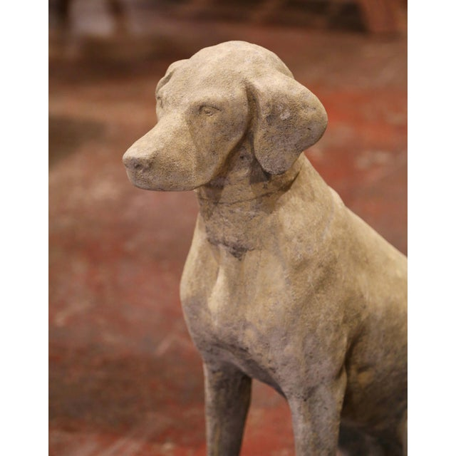 2010s Large French Carved Stone Verdigris Patinated Labrador Dog Sculptures - a Pair For Sale - Image 5 of 9