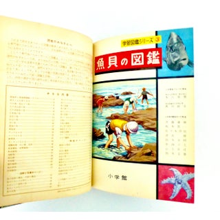 1956 Picture Book of Fish and Sea Life, Japan Book Preview