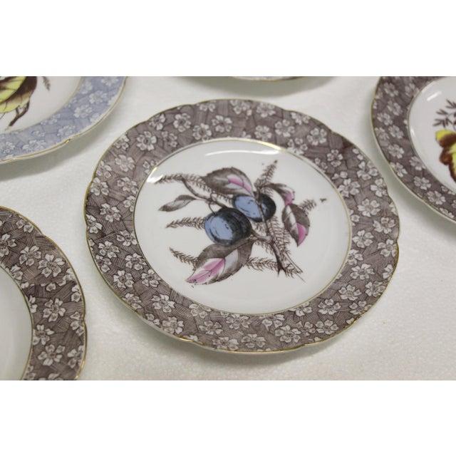 Late 19th Century Antique Austrian Dessert Plates, S/11 For Sale - Image 5 of 8