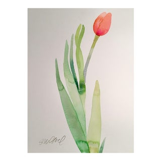 """""""Tulip Pink Over Red Botanical 1"""" Watercolor Painting For Sale"""