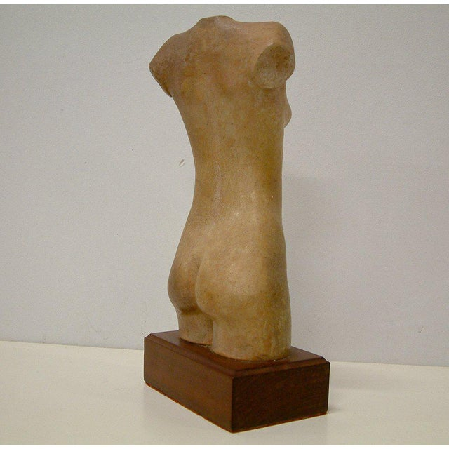 USA 1977 A well executed plaster nude torso by Liyolilo mounted on a fine mahogany base. Signed and dated Liyolilo 77.