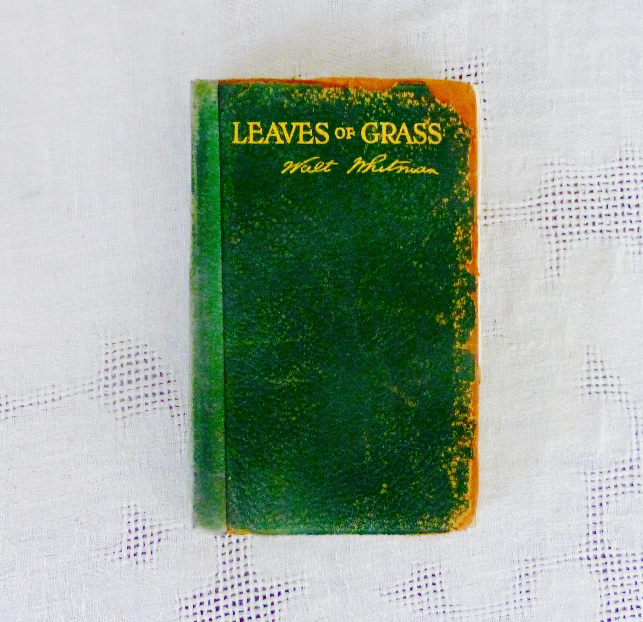 an analysis of leaves of grass by walt whitman Critical analysis,  leaves of grass walt whitman full  death divine dondra head dream earth edition of leaves eidólons eyes face fill'd forever give hand.