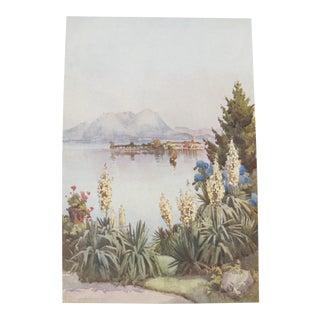 1905 Original Italian Print - Italian Travel Colour Plate - Isola Pescatori From Baveno, Lago Maggiore For Sale