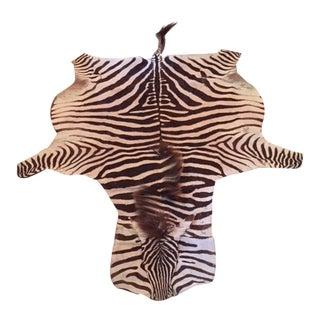 African Zebra Hide Rug - 5′5″ × 7′