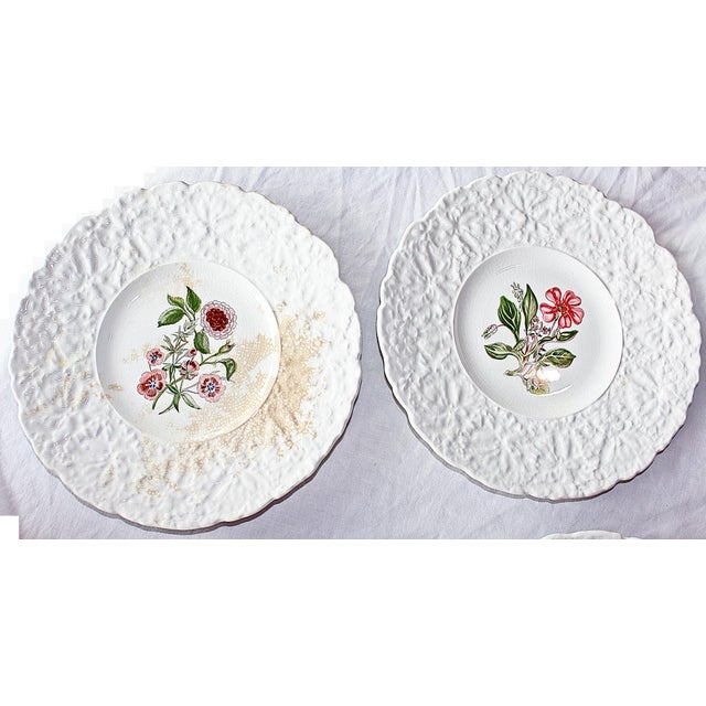 Royal Couldon Dessert Plates, Set of 8 For Sale In West Palm - Image 6 of 8