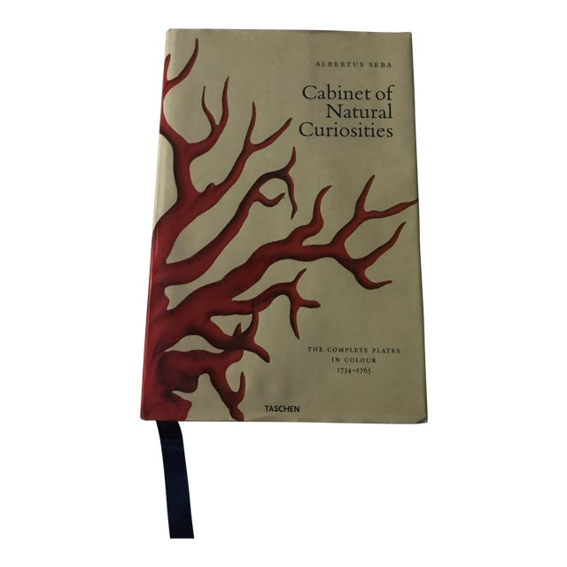 2001 Jumbo Cabinet of Natural Curiosities Book by Albertus Seba For Sale