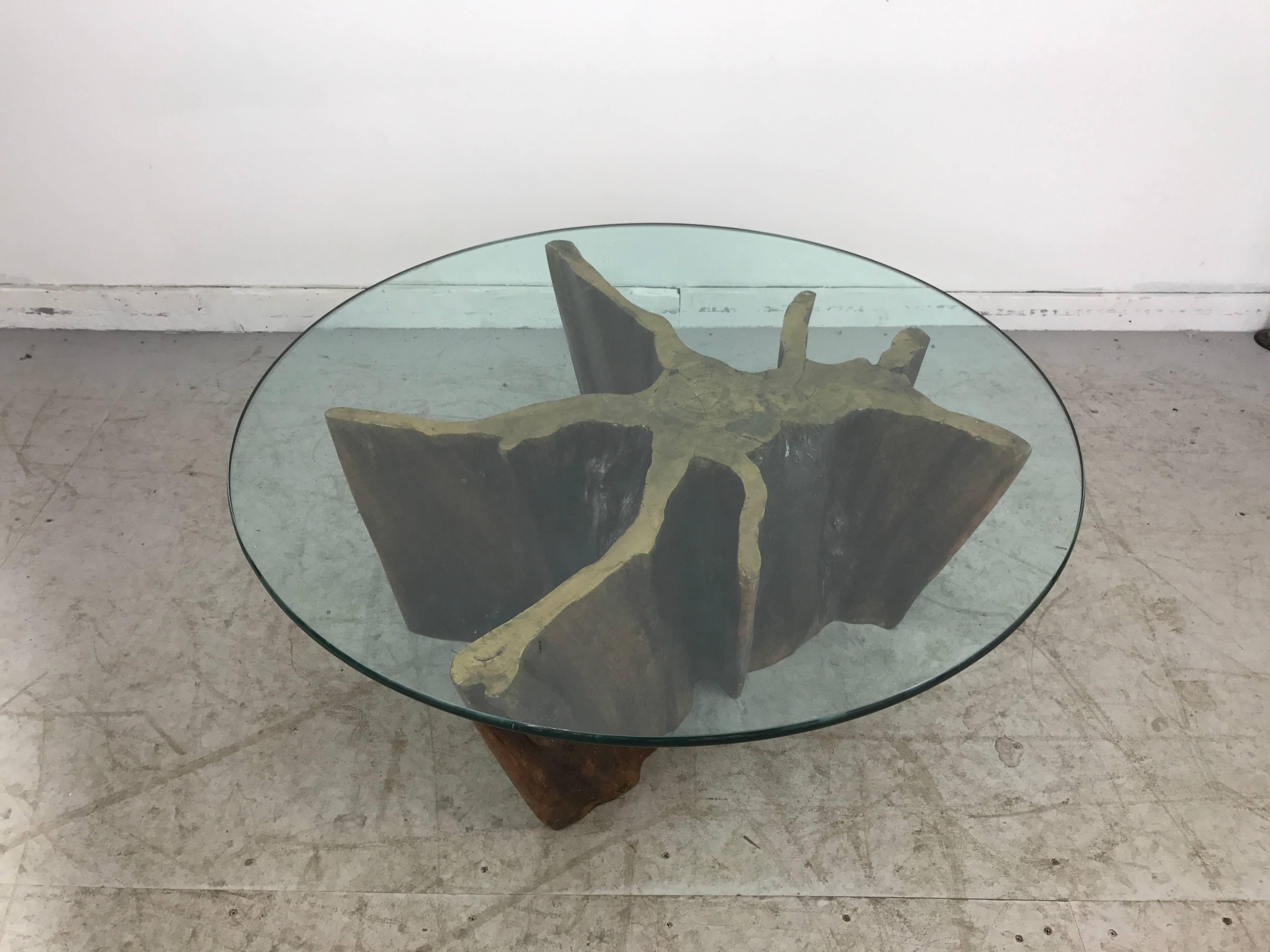 Unusual Organic Cyprus Root And Glass Coffee Table. Retains Original Old  Green Edge Glass Top
