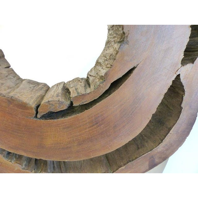 Ipe Reclaimed Wood Mounted Sculpture by Valeria Totti For Sale - Image 9 of 11