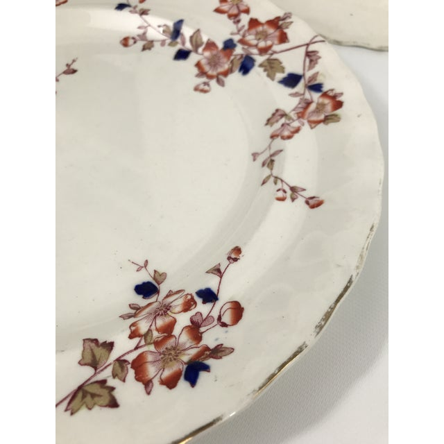 Imari Style Chinoiserie Dinner Plates - Set of 4 For Sale In Charlotte - Image 6 of 11