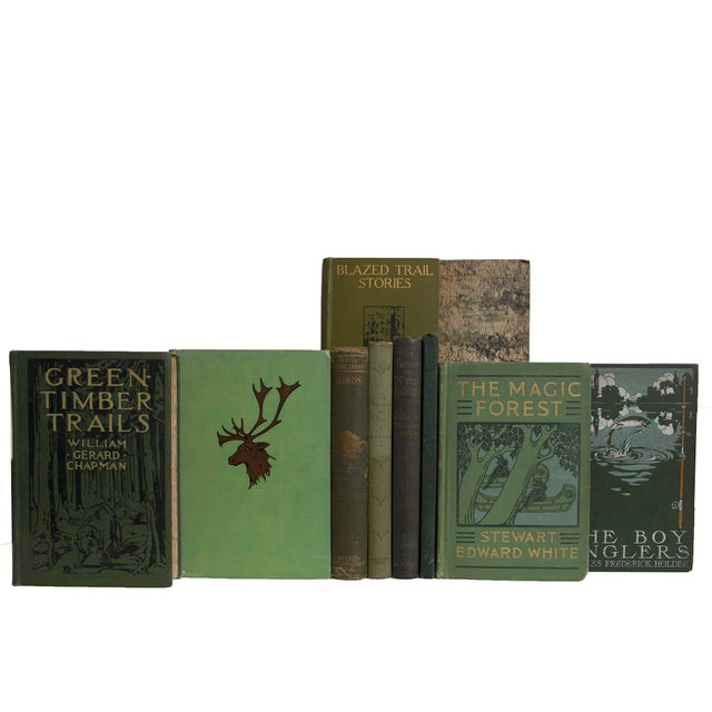 Cabin Into the Pines Book Set - Set of 15 For Sale - Image 3 of 4
