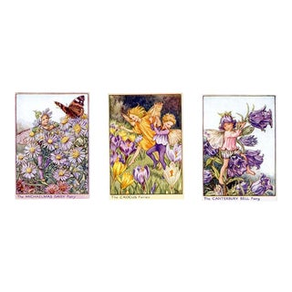 Vintage Flower Fairies of the Garden, Set of 3 Prints For Sale