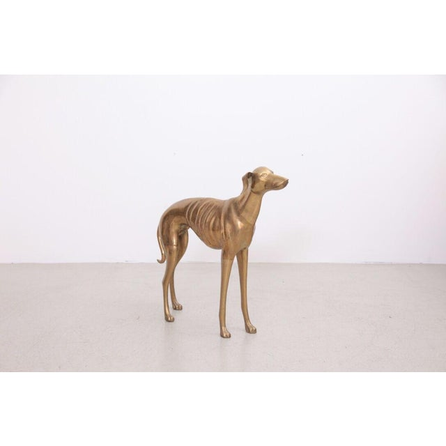 Metal Extraordinary Huge Brass Dog or Greyhound, 1960s For Sale - Image 7 of 7