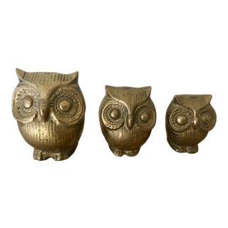 Mid-Century Brass Owls - Set of 3