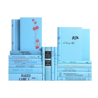 Mid Century Sky Blue Mixed Books - Set of 20 For Sale
