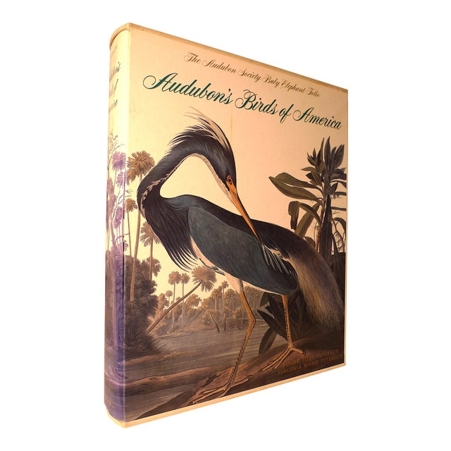 1990s Baby Elephant Illustrated Folio Book, Audubon's Birds of America For Sale