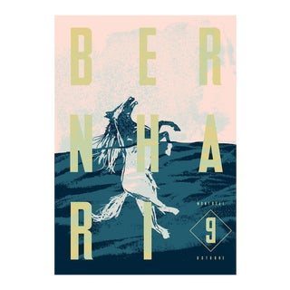 2015 Contemporary Music Poster - Bernhari Horse Swimming For Sale