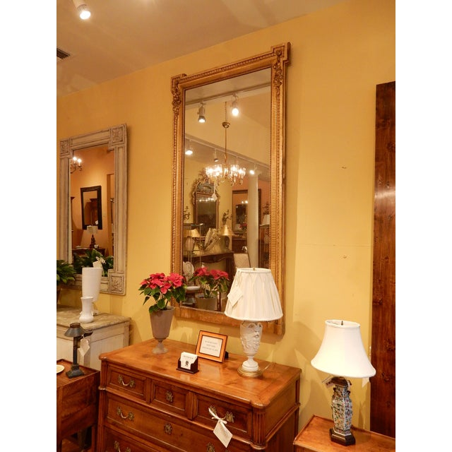 19th Century Louis XVI Gold Gilt Mirror For Sale In New Orleans - Image 6 of 8