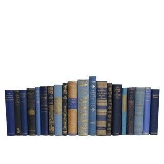 Vintage Denim & Gilt Book Set, S/20 For Sale