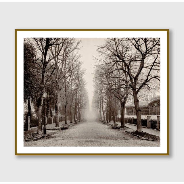 """""""Castello Street, Venice"""" Contemporary Sepia Photograph by Guy Sargent For Sale - Image 4 of 5"""