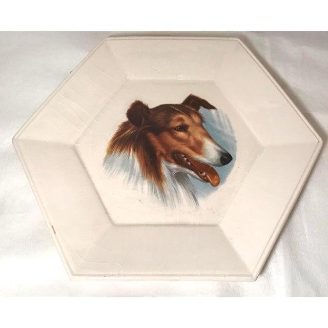 Mid-Century Modern Vintage Ceramic Dog Plates - Set of 4 For Sale - Image 3 of 11
