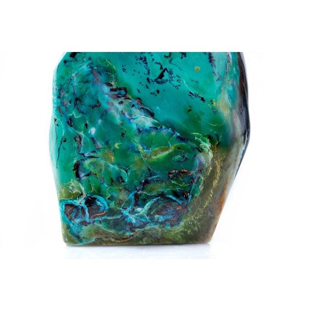 Blue Opal Petrified Wood For Sale - Image 4 of 10
