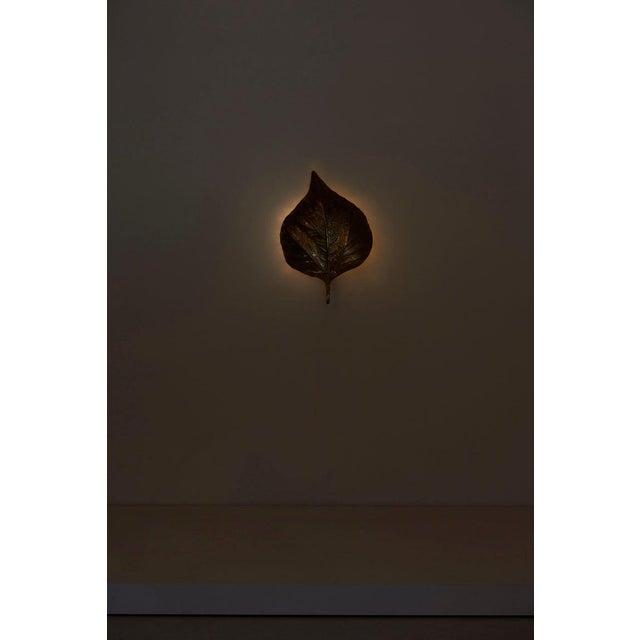 Tommaso Barbi 1 of 4 Huge Rhaburb Leaf Brass Wall Lights or Sconces by Tommaso Barbi For Sale - Image 4 of 13