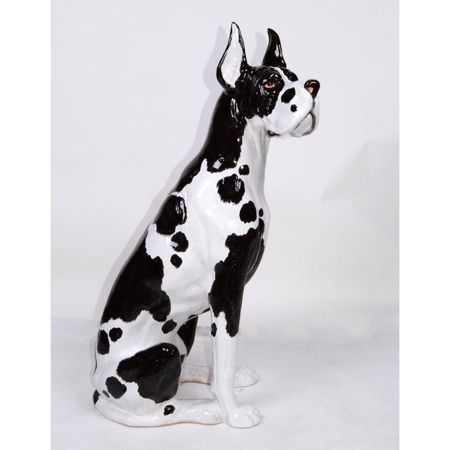 Hollywood Regency Italian Ceramic Life Size Great Dane Sculpture For Sale - Image 3 of 11