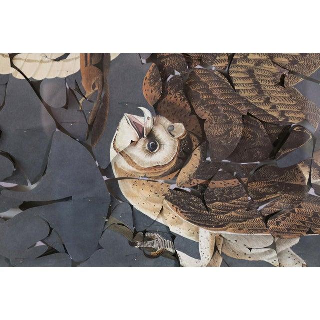 John James Audubon Butterfly Box 'Barn Owl' Print For Sale - Image 4 of 8