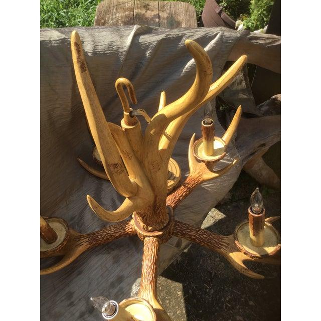 Deer Antler Chandelier For Sale - Image 5 of 10