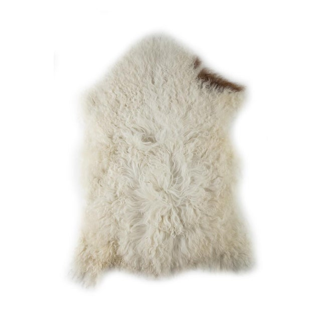 "Contemporary Long Soft Wool Sheepskin Pelt - 2'0""x3'0"" For Sale In Chicago - Image 6 of 6"