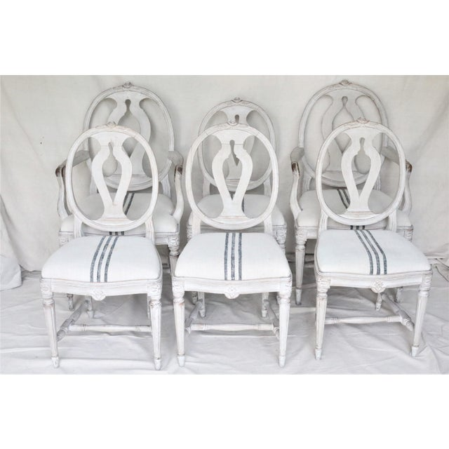 A set of six mid 19th century Swedish dining chairs in the classic oval back Gustavian style with bold carved rose crest...