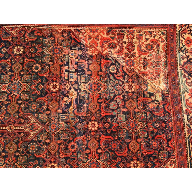 19th Fereghan / Saruk Palace Size Rug For Sale - Image 12 of 13