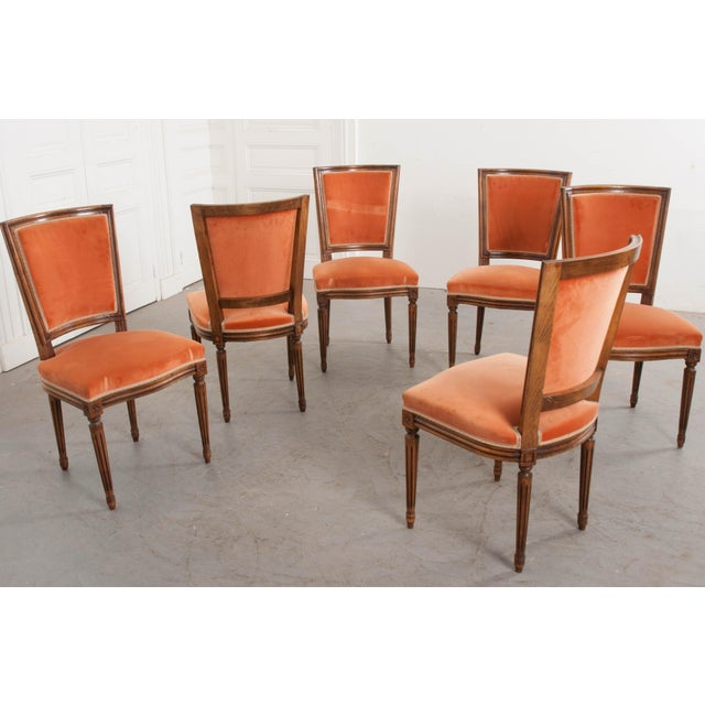 French 19th Century Louis XVI-Style Walnut Sidechairs-Set of 6 For Sale In Baton Rouge - Image 6 of 12