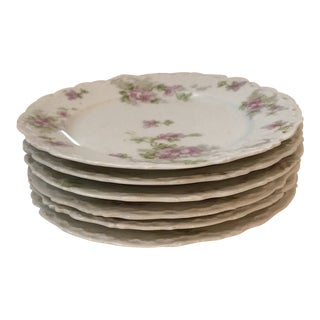 Elite Works Limoges Desert Plates - Set of 6 For Sale