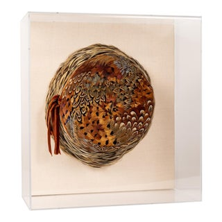 Pheasant Feather Hat in Lucite Shadowbox For Sale