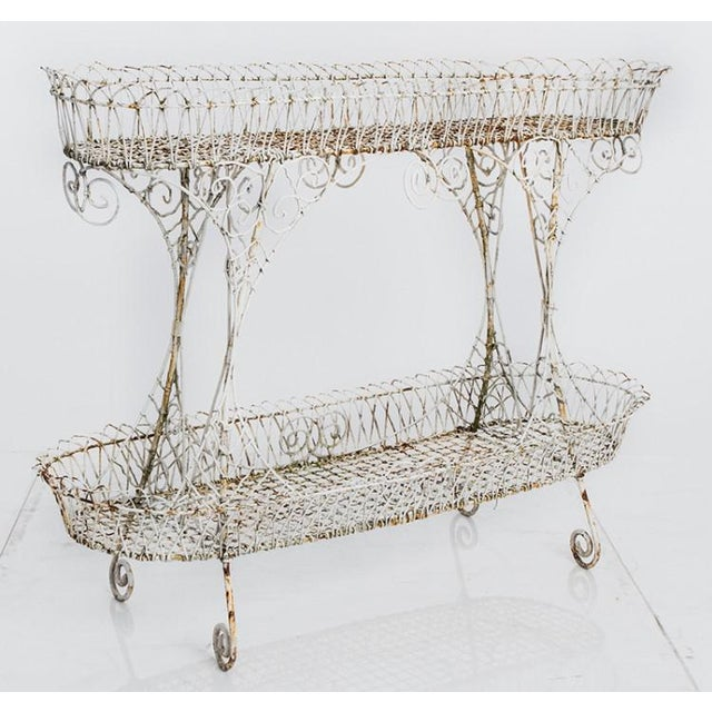 English Wire Planter For Sale - Image 3 of 3