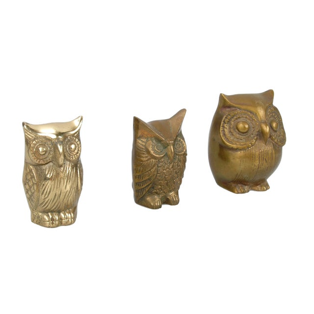 Brass Owl Figurines - Set of 3 - Image 4 of 6