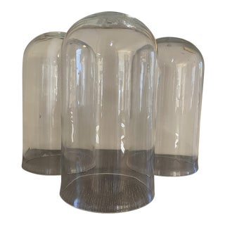 Early 1900's Glass Garden Cloche With Air Hole For Sale