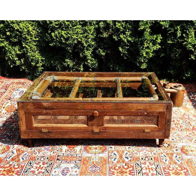 Primitive Super Hatcher Farm Copper Steam Incubator Farmhouse Coffee Table - Image 2 of 10