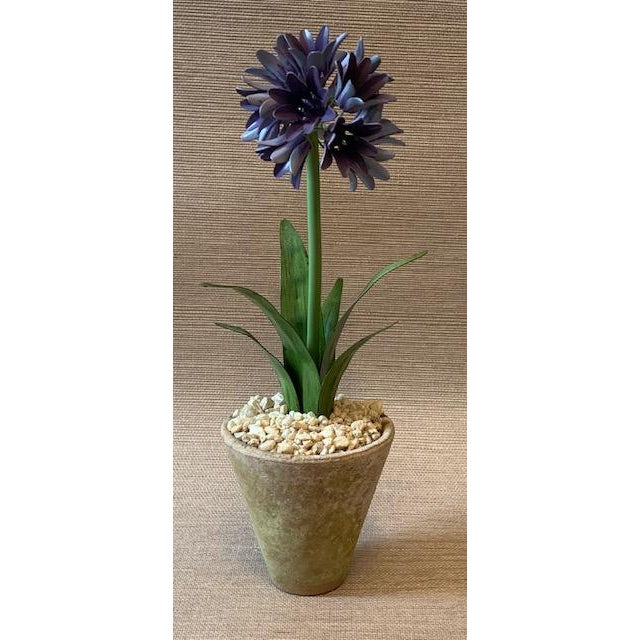 Handmade and hand painted tole potted Agapanthus flower by Tommy Mitchell. In a terra-cotta planter with real stones....