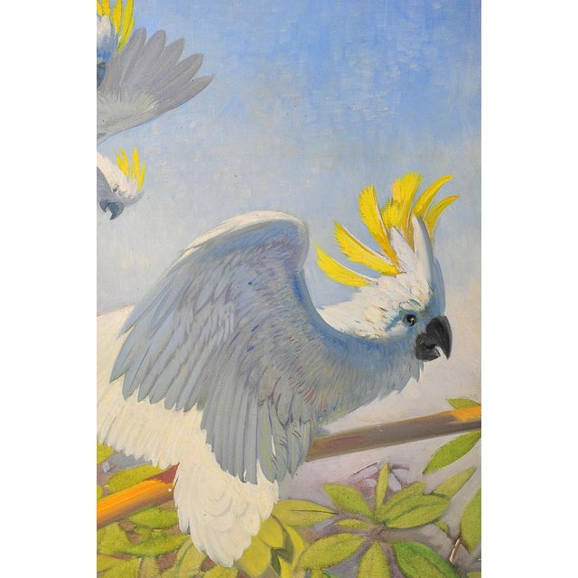 Oil Paint White Parrots, Oil Painting by J. Moessel For Sale - Image 7 of 10