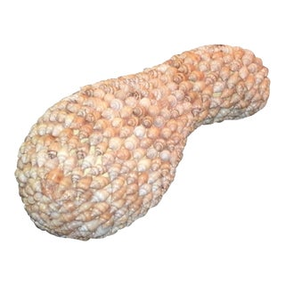 Decorative Shell Encrusted Gourd For Sale