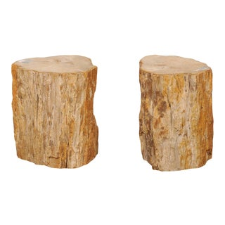 Rustic Beige, Brown and Cream Polished Petrified Wood Side Tables - a Pair For Sale