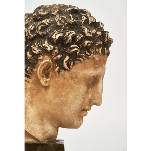 White French Vintage Hermes Bust For Sale - Image 8 of 12