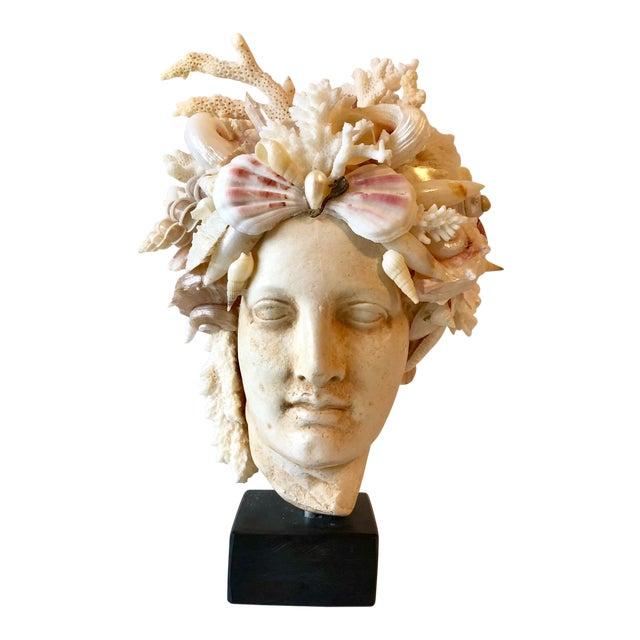 Organic Modern Christa's South Seashells Cast Stone Hygiea Head For Sale